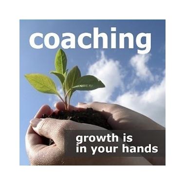 Coaching - 3 months